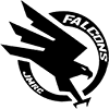 Falcons Logo